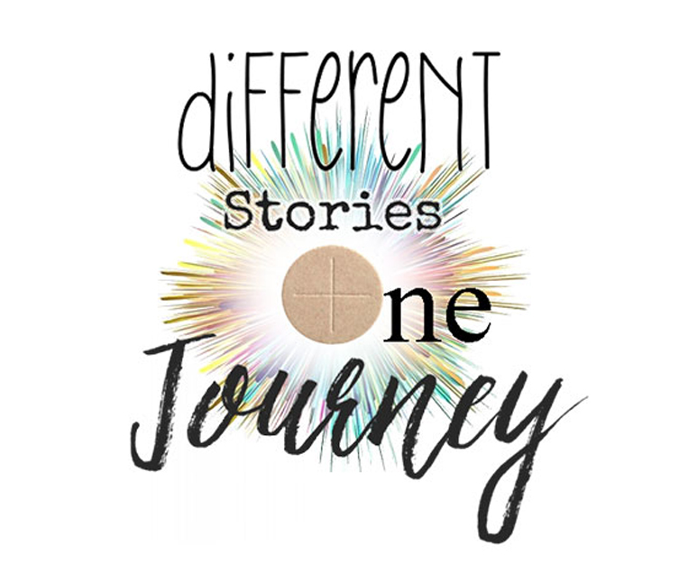 Different Stories One Journey Logo